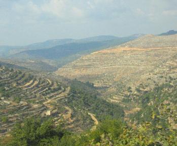 Paysage, région de Bethlehem, Palestine